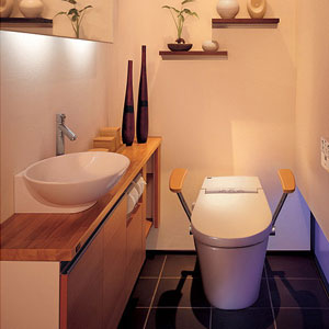 the water closet project where japan. Black Bedroom Furniture Sets. Home Design Ideas